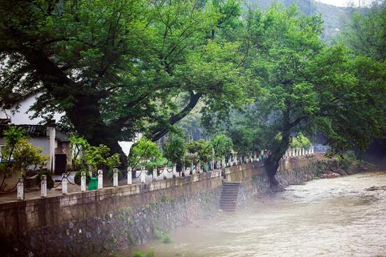 雨雾中的村庄