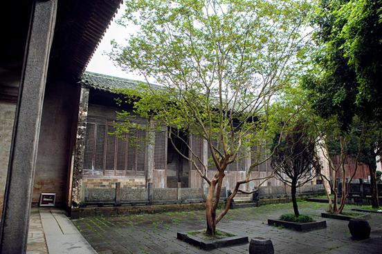 祠堂中的树木