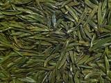 3月11日春茶播报:重庆市万盛区九锅箐高山茶园