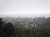 4月7日春茶播报:江苏省苏州市洞庭山西山