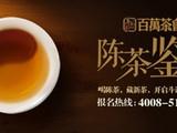斗记百万茶会:陈茶鉴道
