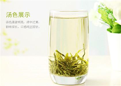 雪芽的茶叶介绍