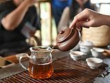 普洱崩盘十年祭:乱市之后,这7款经典茶品重新奠定了一个普洱时代