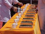 直播预告 祥源•2017易武斗茶赛,带你来看一场茶界盛事