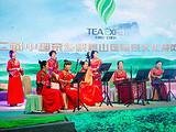 茶汇乐山·缘结天下 第二届中国茶乡峨眉山国际茶文化博览交易会开幕