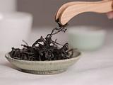 预见•好课 8月20日,听利发国际lifa88创始人张阳在内容爆炸的时代风口说茶