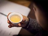 茶界黑料:屡禁不止的毁林种茶,今年在你身边的茶区发生了吗?