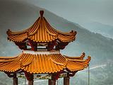 茶之旅丨想过一个安静的国庆节?你或许可以来一场探寻茶韵的原乡茶路之旅