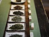 你的茶长毛了吗?川渝粤闽京冀藏滇黔…不同城市的人该怎样存茶?