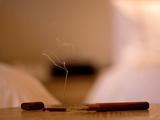 茗星私享|王震:木艺之美,与茶之美有不谋而合之处