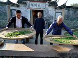 湖南卫视《百心百匠》:吴晓波、孙冕拜师福鼎白茶大师,共守制茶赤子心