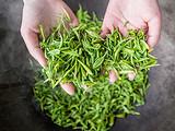 茶人专栏丨母亲的茶