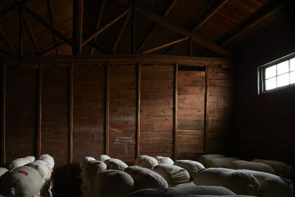 祁红木仓1950年9月开始施工,是中国茶叶界现存最古老、规制最高、目前仍在使用的红茶木仓之一。
