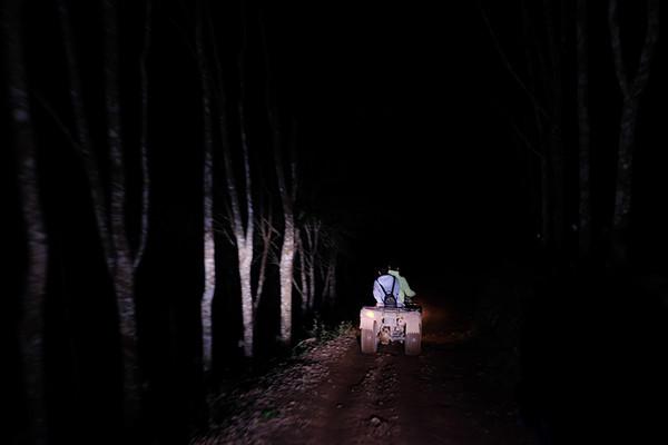 天不亮,一行人就在当地采茶人的领路下,从茶山住处出发,正式踏入这片不知之地。