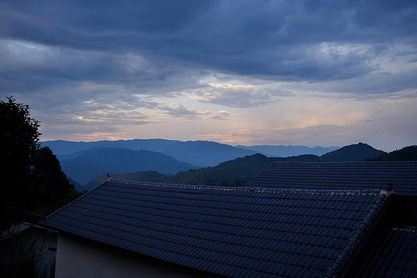 当夕阳的最后一抹余晖落下,这个巨型古茶园,融进了浓浓夜色,和整个山脉融为了一体。