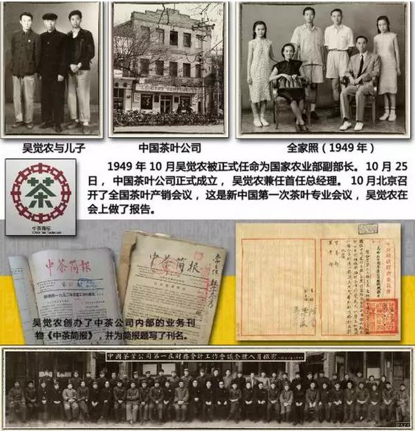 吴觉农,中国茶叶公司