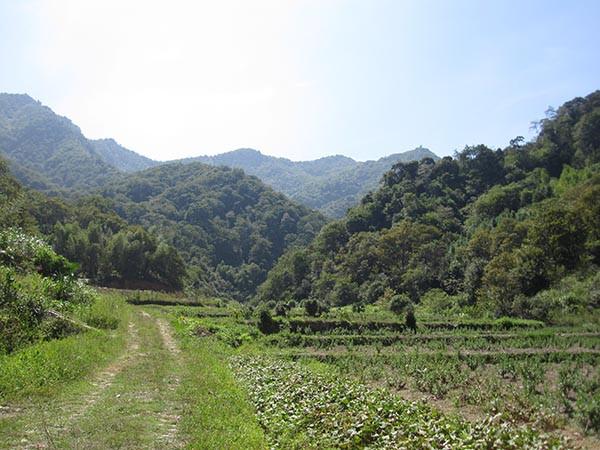 珍珠山浪山村