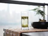 春茶播报:普洱茶整体进入盛采期,受雨水和萌芽量减少影响,可能导致减产