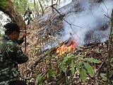 易武天门山古茶园发生火灾!并无高杆古树被烧毁,火情已被控制