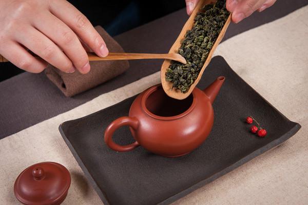 永春佛手,乌龙茶,投茶