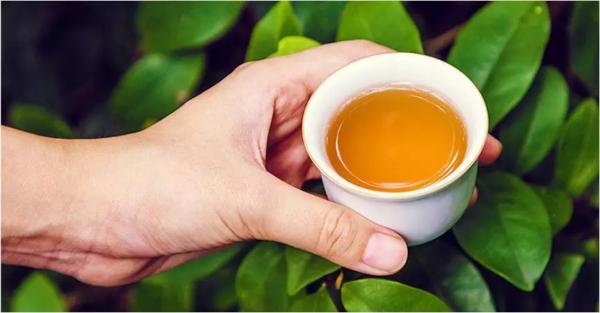 茶杯,茶汤