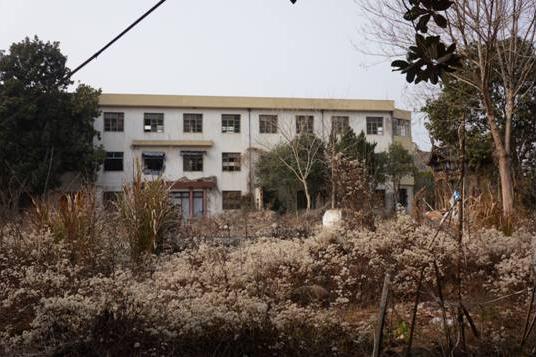 废弃的老祁门茶厂