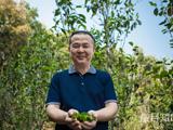 """南方日报特刊   郑少烘:将茶""""香""""讲给爱茶之人"""