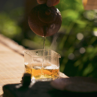 茶问答 | 茶语问答交流平台
