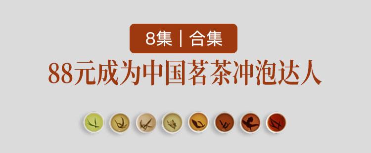 88元成为中国茗茶冲泡达人