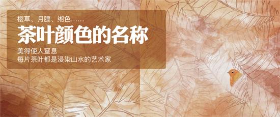 樱草、月膘、缃色……茶叶颜色的名称美得使人窒息!每片茶叶都是浸染山水的艺术家