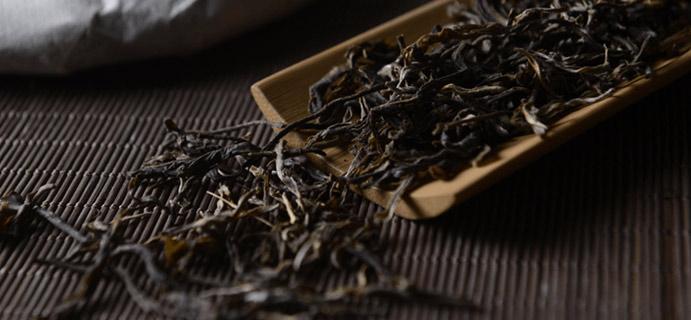 学茶 | 看树龄巧识普洱  普洱茶的口感与茶树树龄、当年气候情况有紧密联系!