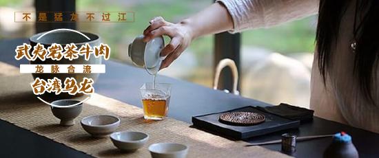 不是猛龙不过江,武夷岩茶牛肉与台湾乌龙的龙脉合流