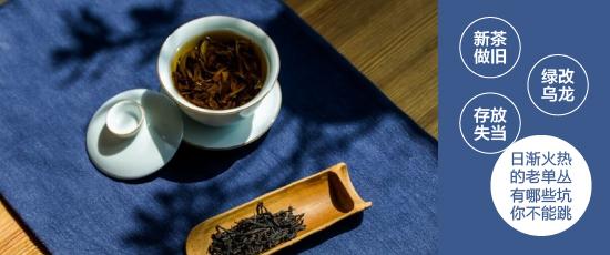 新茶做旧/绿改乌龙/存放失当,日渐火热的老单丛有哪些坑你不能跳?
