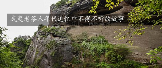 武夷老茶人年代追忆中不得不听的故事
