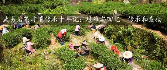 武夷岩茶非遗传承十年记:艰难与回忆 传承和发扬