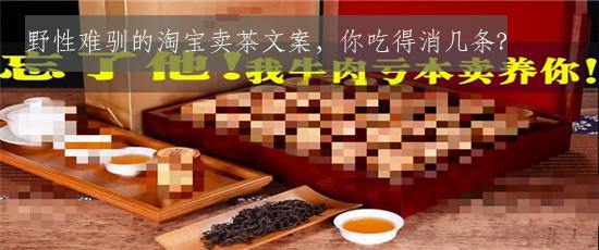 野性难驯的淘宝卖茶文案,你吃得消几条?