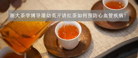 浙大茶学博导开讲红茶如何预防心血管疾病!