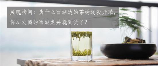 灵魂拷问:为什么西湖边的茶树还没开采,你朋友圈的西湖龙井就到货了?