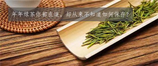 年年绿茶你都在追,却从来不知道如何保存?
