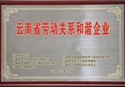 2012年 云南省劳动关系和谐企业