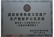 重庆市非物质文化遗产生产性保护示范基地