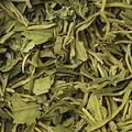 叶色黄绿,叶质柔软,叶片破碎,匀整度普通。