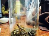 三种绿茶,三样茶香,三味人生!