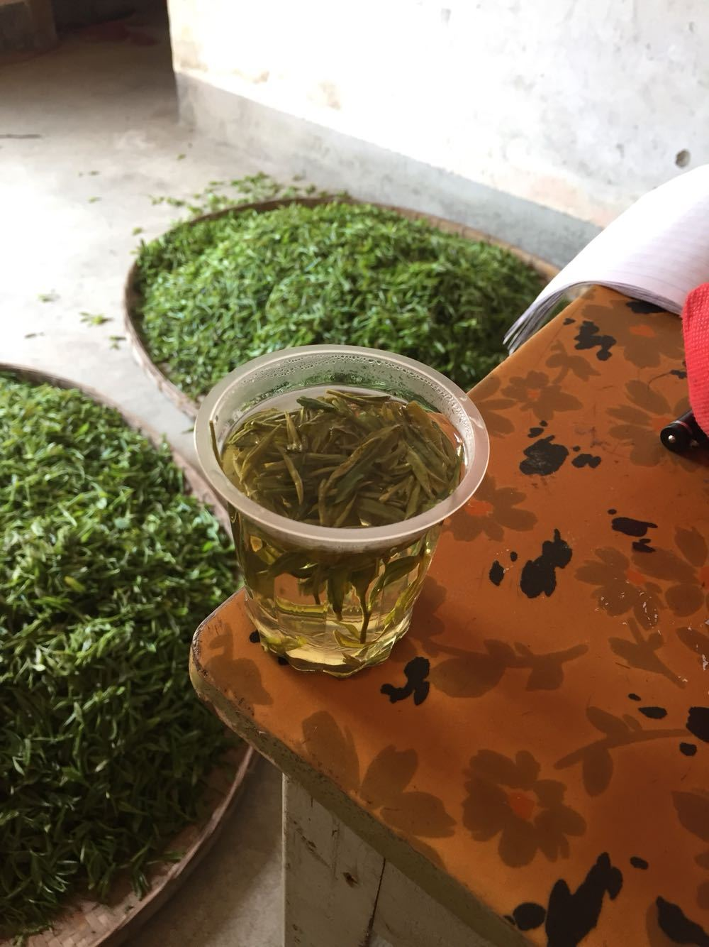 2017新茶,千岛湖玉叶,