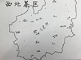 普洱茶茶山的特色与口感介绍