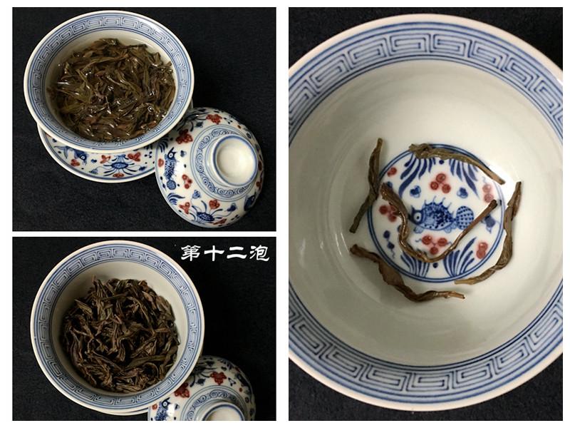 【试用报告】叶丛嘉乌龙茶·蜜韵扎实的白叶单丛