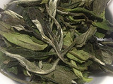 【纯干货】给白茶新手的几点建议!【上】