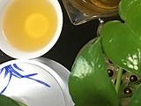【晒茶】圆茶传奇1979