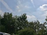 下了三天半雨,终于晴天了,来个图