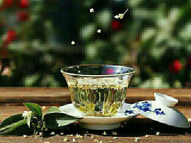 人淡如茶,在寂寞中生长,在压力中坦然